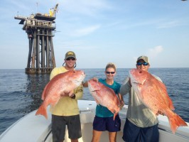 red snapper in louisiana
